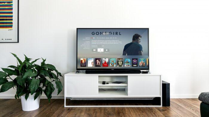 plante, La publicité, intérieur, salon, télévision, la télé, meubles, chambre, centre des médias, Design d'intérieur, marque, produit, conception, multimédia, Dispositif d'affichage